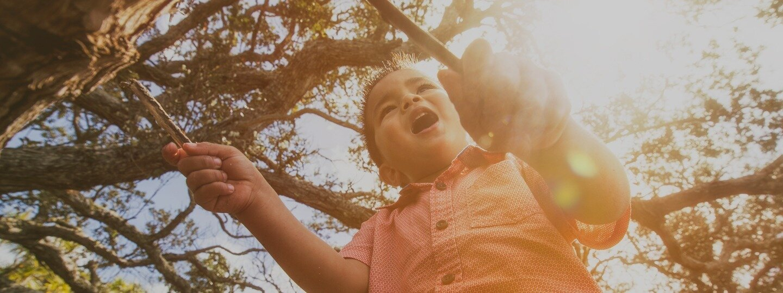 Slide 6 – Child In Tree